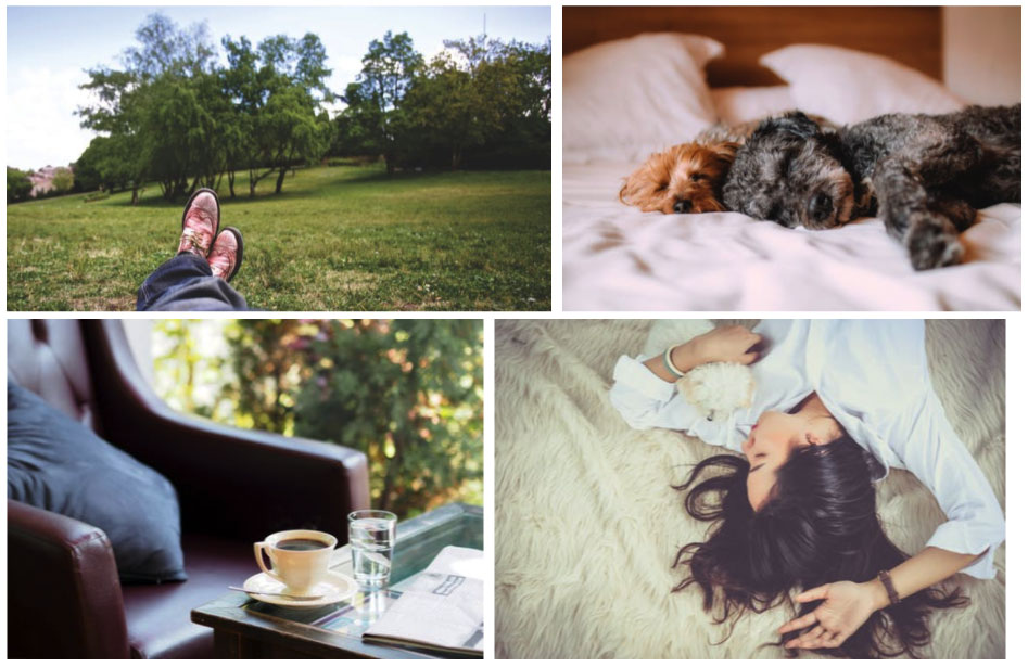 Ejemplo de fotografías que expresan una forma de vida y una personalidad concretas.