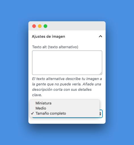 opciones de tamaño en los ajustes de imagen en WordPress