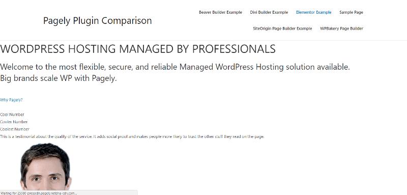 ejemplo de página con Elementor desactivado